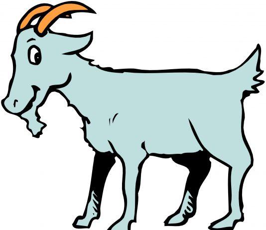 goat-telugu stories PDF