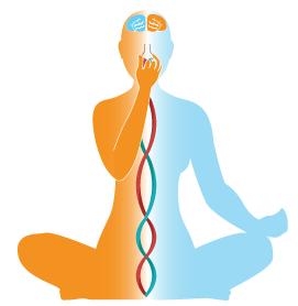 Pranayamamu Yoga Telugu book PDF